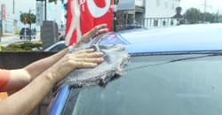 綺麗に洗車